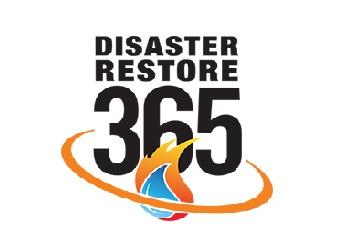 Disaster Restore 365